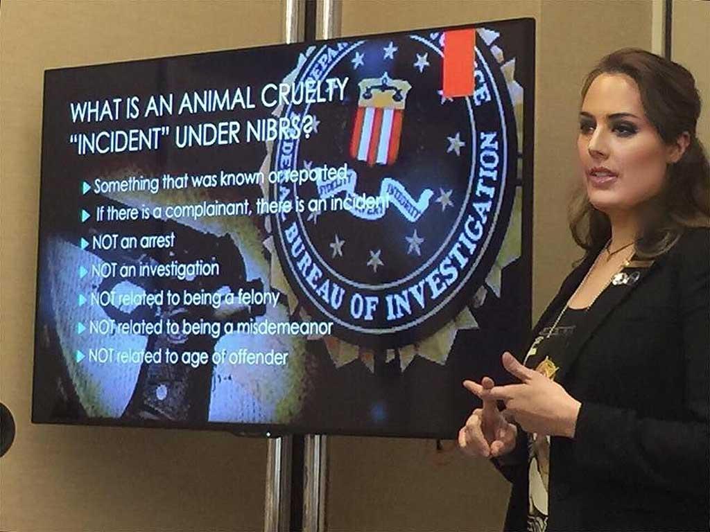 El FBI publica los datos de maltrato animal del 2016: investigadores presentan las estadísticas