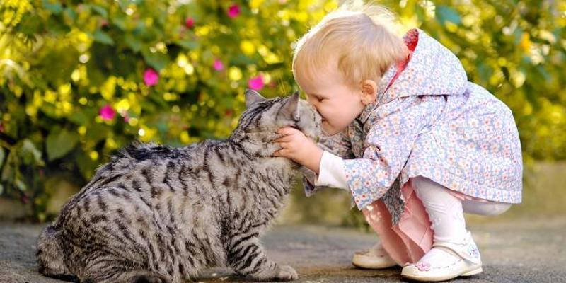 Es muy importante detectar la violencia de los niños sobre los animales